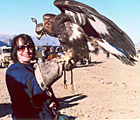 Adventurous Traveler with hunting eagle on a tour to Mongolia